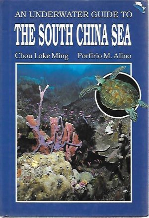 UNDERWATER SOUTH CHINA SEA